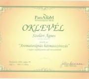 oklevel003